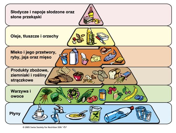 piramida-zywienia1