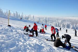 Zimowy krajobraz - wycig  Lolobrigida, Szklarska Porba