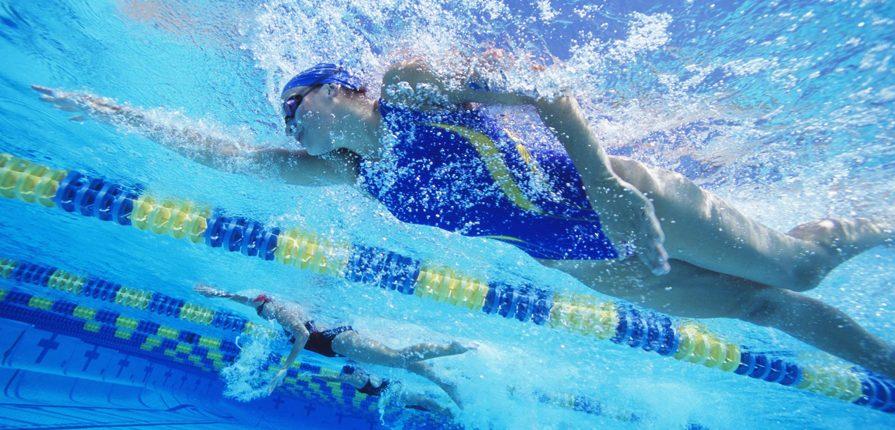 swimming01-895x430